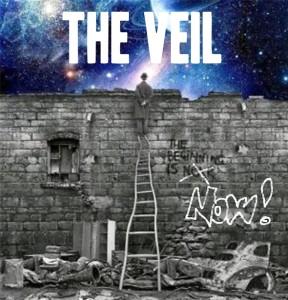 veil1