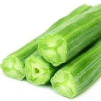 moringa-oleifera-young-pods