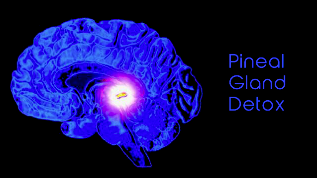 Pineal Gland DETOX 2