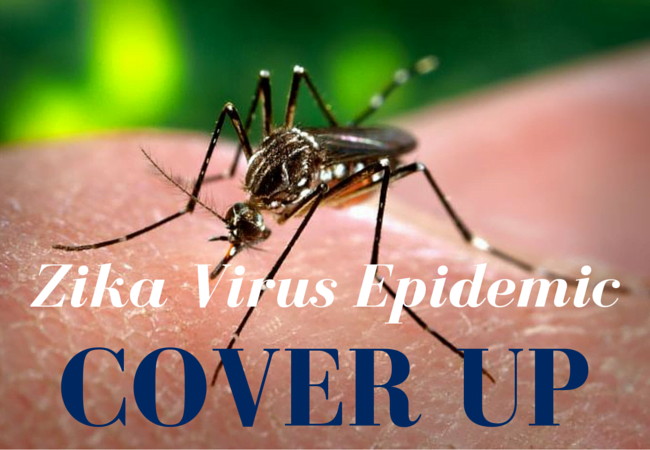 What is the Zika Virus Epidemic Covering Up?