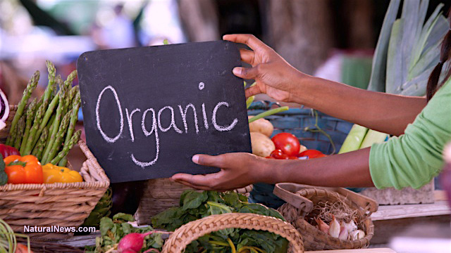 Farmers-Market-Organic-Produce-Veggies-And-Fruits