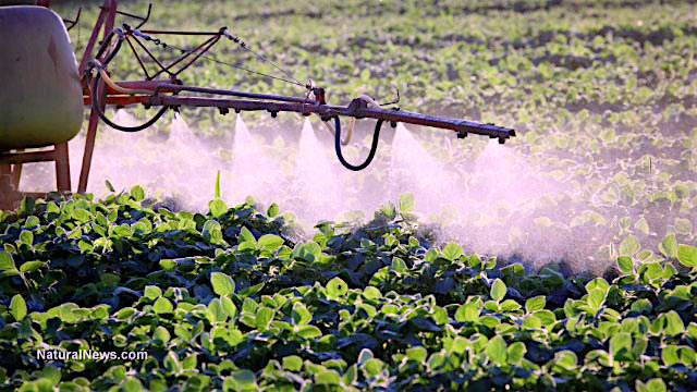 Herbicide-Plant-Spray-Crops-Poison