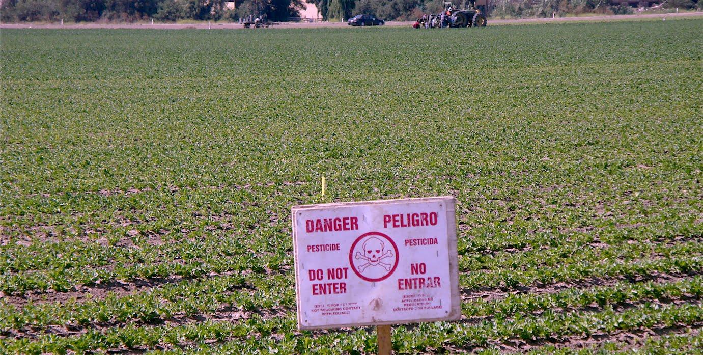 pesticidesxx