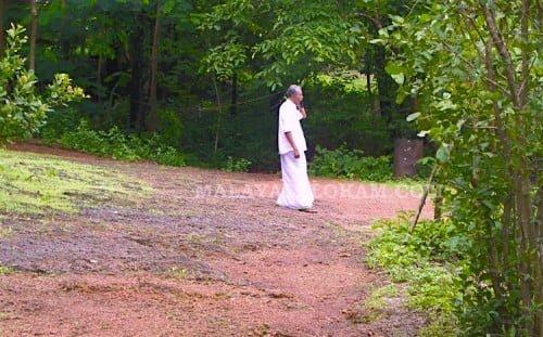 Kareem-forest-500x311