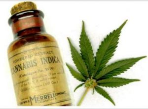 Cannabis oil cancer