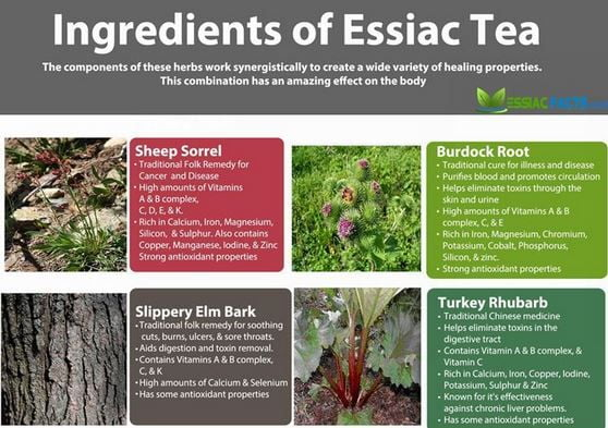 Essiac Tea Cancer