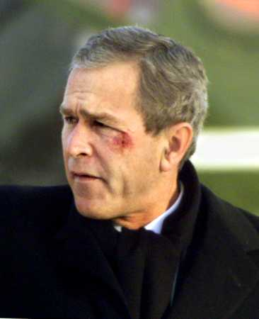 Gorge Bush Junior Black Eye