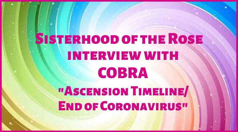 SOTR interview Cobra graphic
