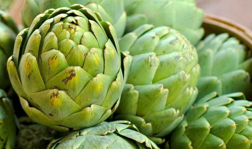 magical and conscious artichokes