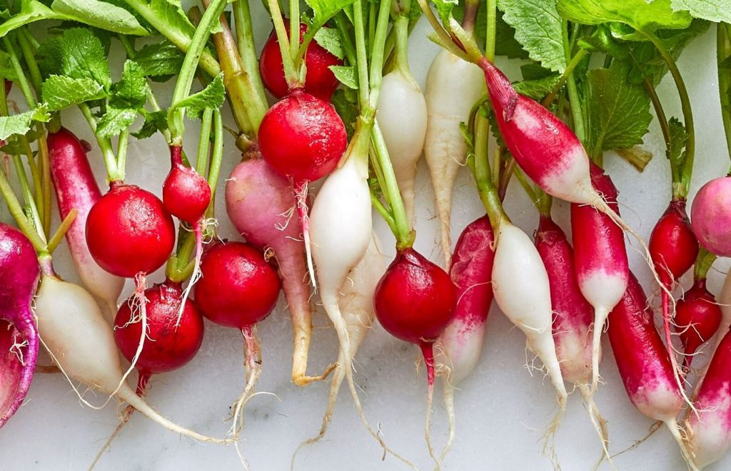 Magical and Conscious Radish