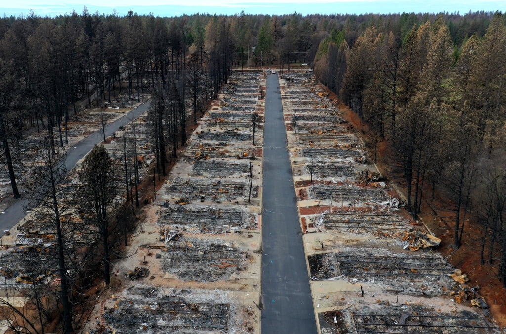 rows of burnt out houses but not trees next to them